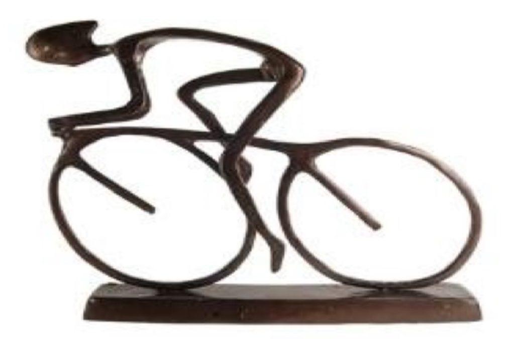 Schwinn Cycling**